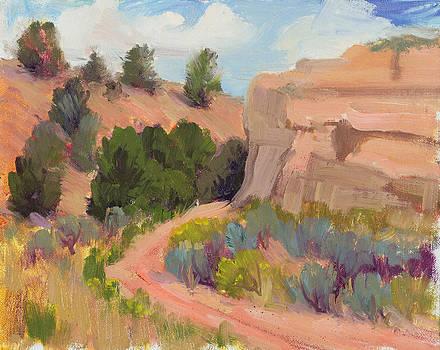 Southwest Delight by Suzanne Elliott