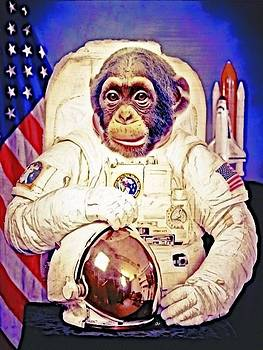 Jared Johnson - Space Chimp