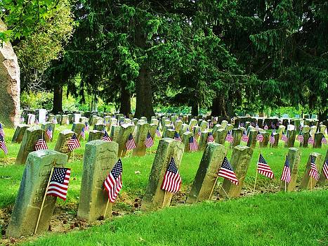 Spanish American War Graves at attention 2 by Mark Malitz