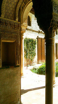 Spanish Garden by Seay Harshaw Delgado