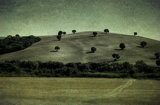 Spanish Hills by Tim Kahane