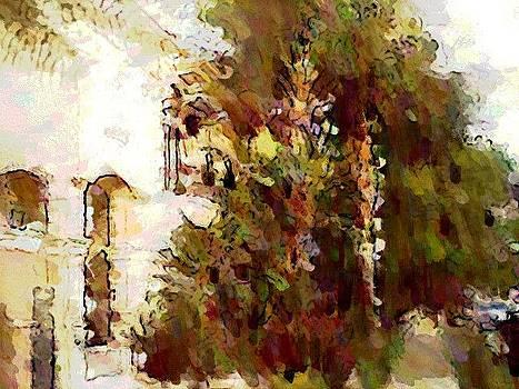 Spanish Style  by Mehrdad Sedghi