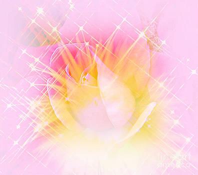 Sparkling Starlight Burst Abstract by Judy Palkimas
