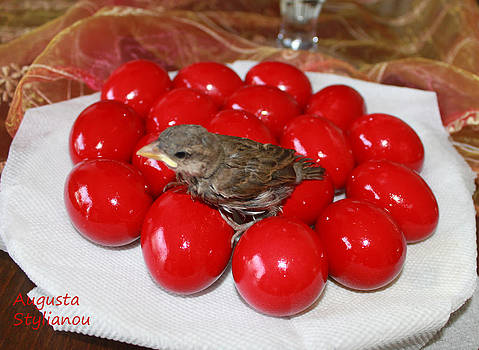 Augusta Stylianou - Sparrow on Red Eggs