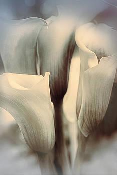 Speaking Softly by Darlene Kwiatkowski