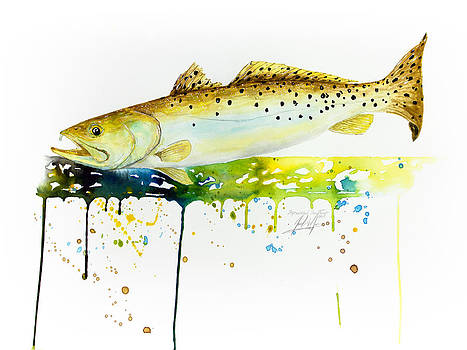 Speckled Sea Trout by Joel DeJong