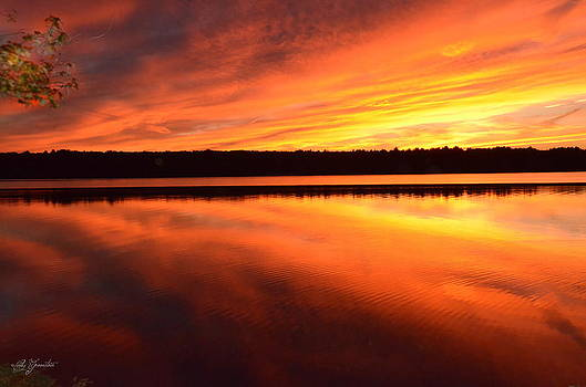 Spectacular Orange Mirror by Cindy Greenstein
