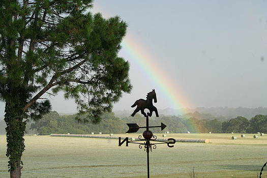 Spectacular Rainbow by Lisa Browning