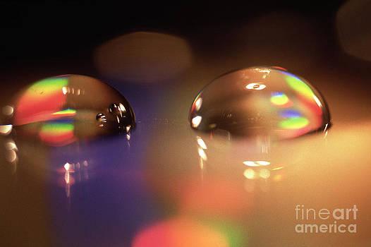 Heiko Koehrer-Wagner - Spectrum of colors
