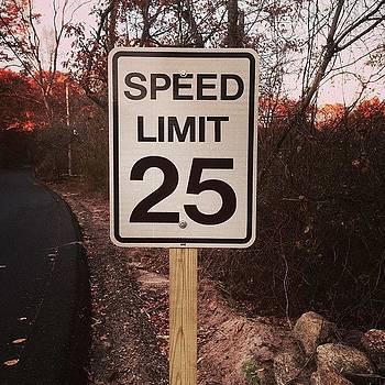 Speed Limit by Dan Mason