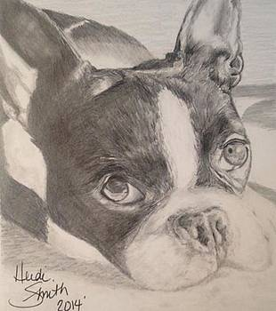 Spencer  by Heidi Smith