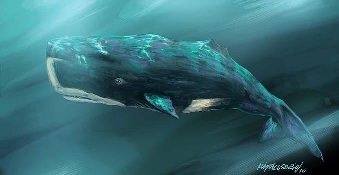 Sperm Whale by Miguel Osorio