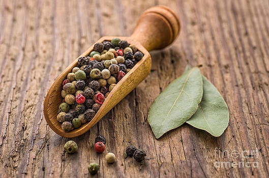 Spice scoop with mixed pepper by Palatia Photo