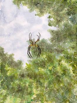 Spider in Web #2 by Jennifer  Creech