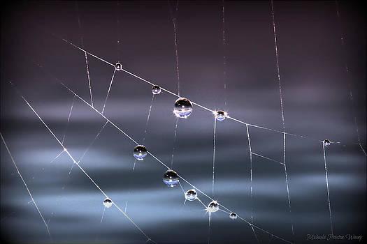 Spider Pearls by Michaela Preston