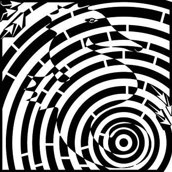 Spin Art SeaHorse Maze  by Yonatan Frimer Maze Artist