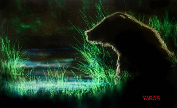 Spirit Bear by YourArtist Rob