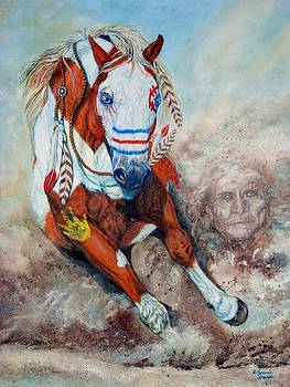Spirit of a War Pony  by Amanda Hukill