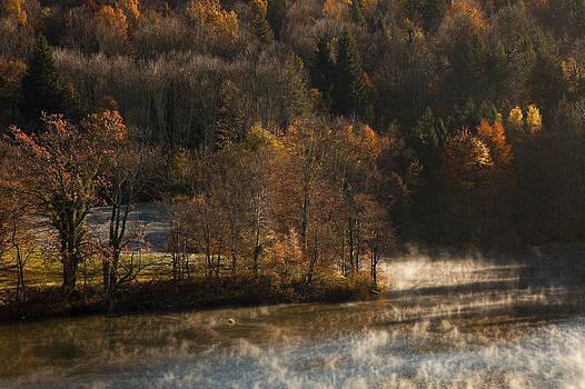 Spirit of Autumn by Miroslav  Turkalj