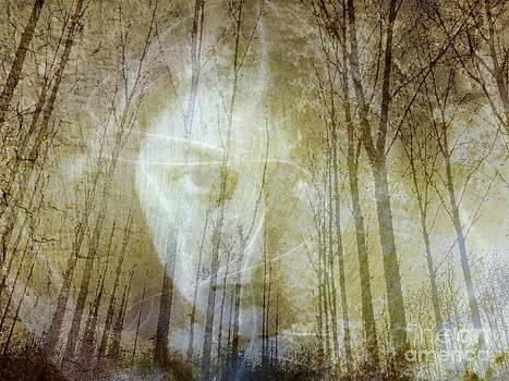 Spirit Of The Forest by Jessie Art