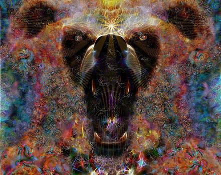 Spirito del orso by D Walton