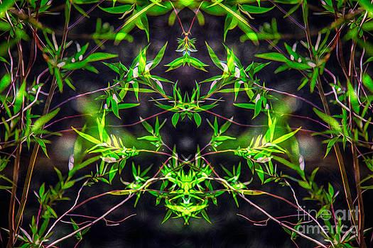 Omaste Witkowski - Spiritual Intoxication