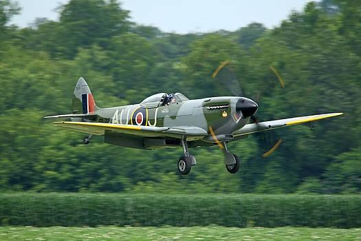 Spitfire at Geneseo by Jonathan Edwards - Corvidae Studio Photos