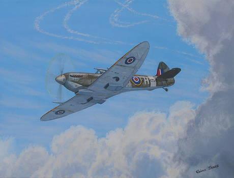 Spitfire by Elaine Jones