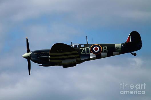 Spitfire by Tom Hard