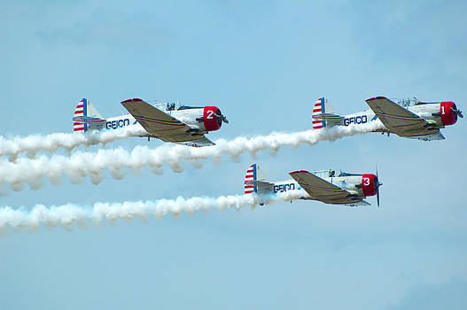 Spitfires by Sheri Heckenlaible