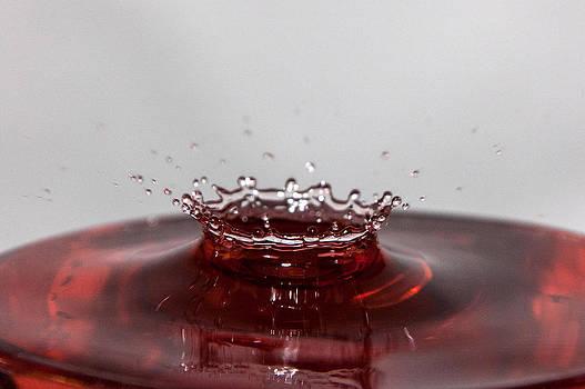 Splash by Casey Becker