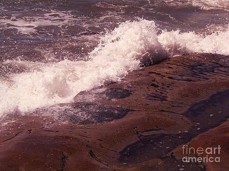 Splash by Dori Sanz