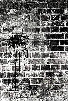 Splash Graffiti by Quirky Jen Photos