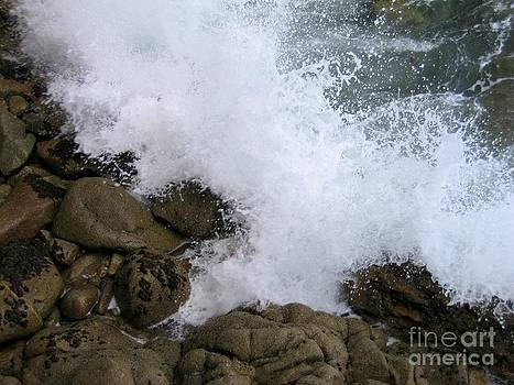 Splash by James B Toy
