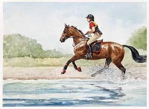 Splash by Nola McConnan