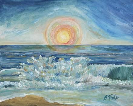 Splash of Dawn by Bev Veals