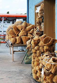Howard Markel - Sponge for Sale
