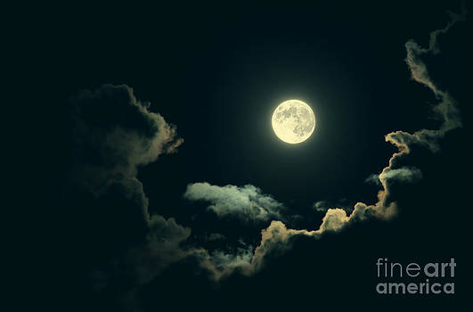 Spooky Full Moon by Sharon Dominick