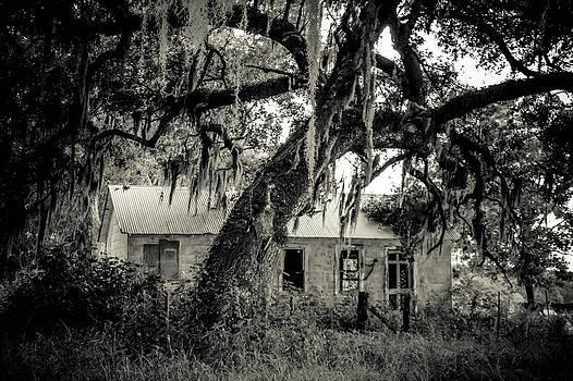 Spooky House by Angela Moreau