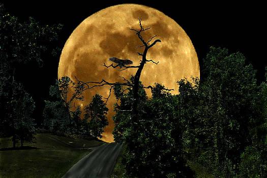 Spooky Road by David Yocum