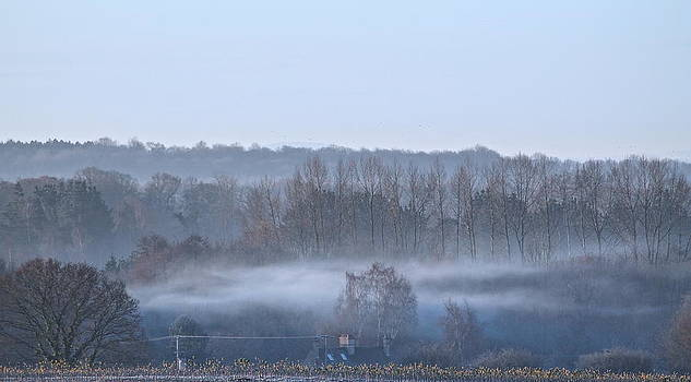 Spooky Winters Morning by Karen Grist