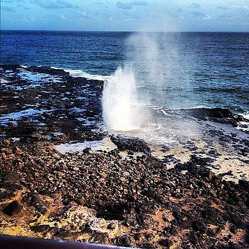 Spouting Horn by Nicole Beck