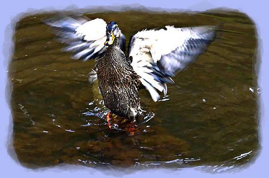 Spread Your Wings by Susan Leggett