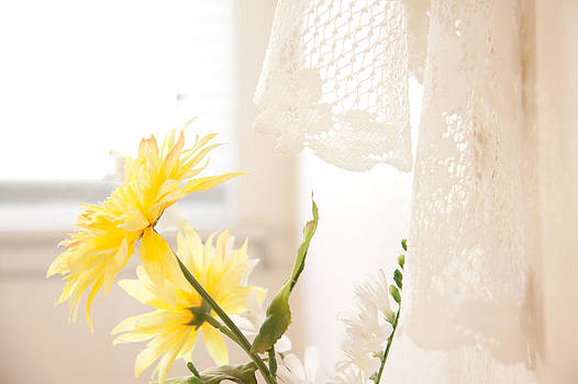 Spring and Lace by Charys Photography