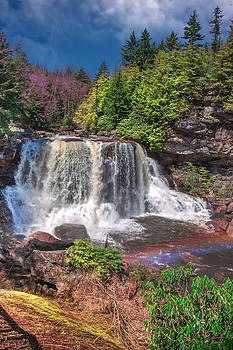Mary Almond - Spring at Blackwater Falls