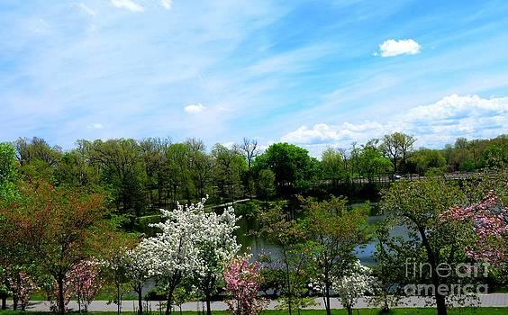 Spring At Hoyt Lake by Kathleen Struckle