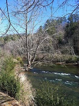 Spring at Rivers Edge by Robert J Andler