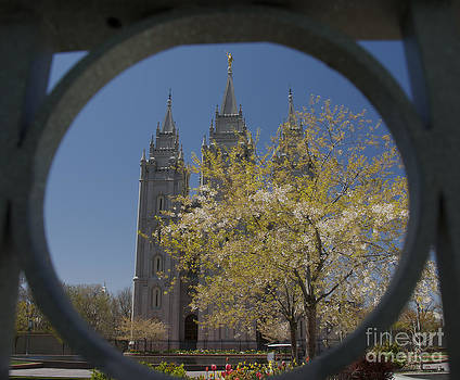 Spring at the Temple by Nicole Markmann Nelson