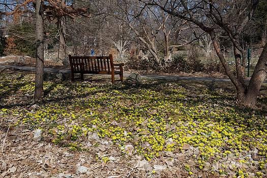 Spring Beal by Joseph Yarbrough