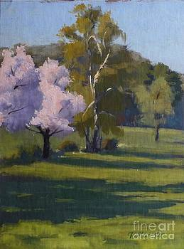 Spring Blossoms by Viktoria K Majestic
